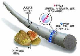 抗PM2.5