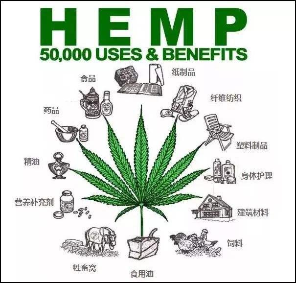 大麻CBD产品